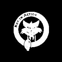 Kot in Action Creative Artel